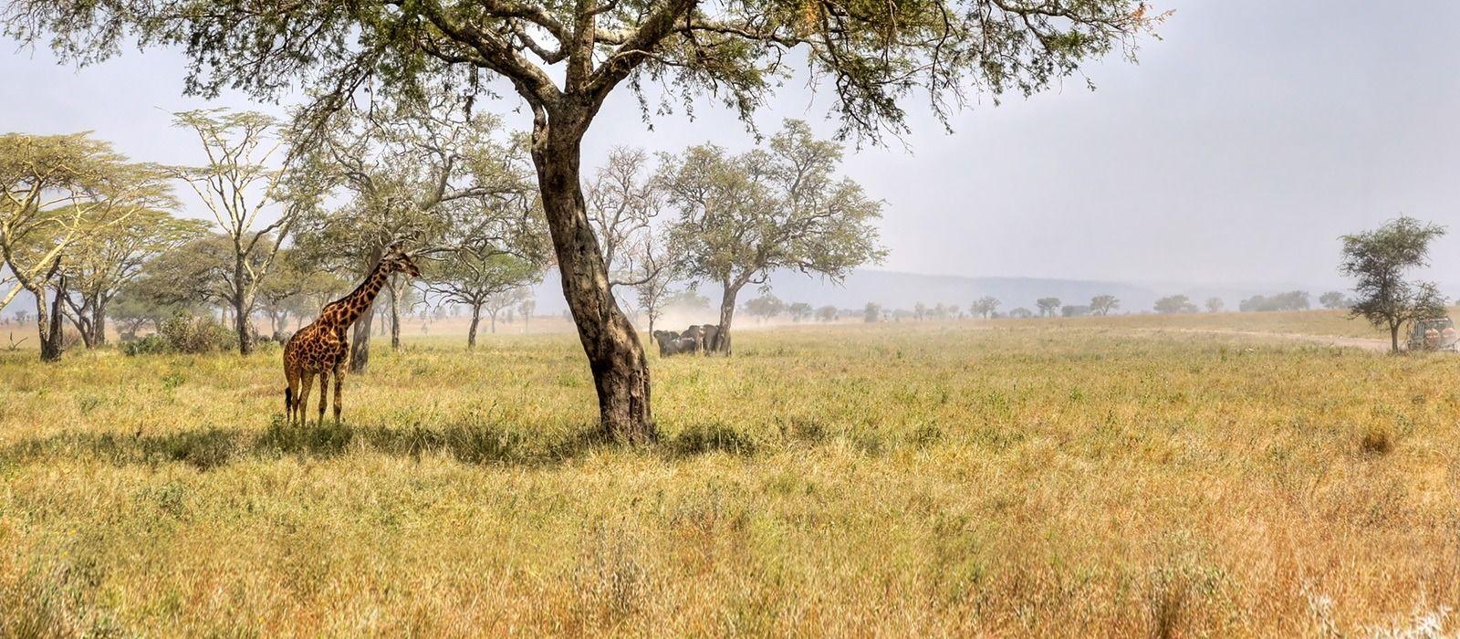 Reiseziel Mount Meru Tansania