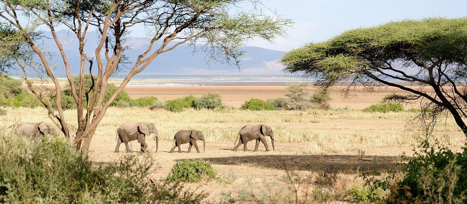 Image result for tanzania destination