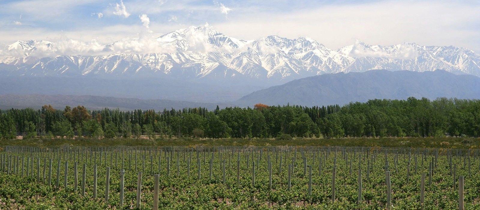 Argentinien: Wein und Wasserfälle Urlaub 2