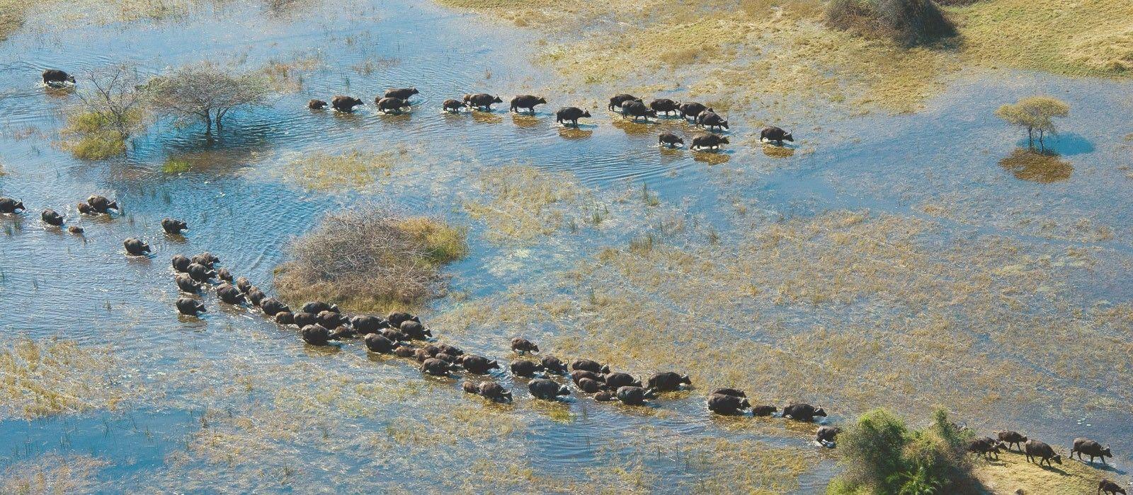Botswana Reisen & Rundreisen 1