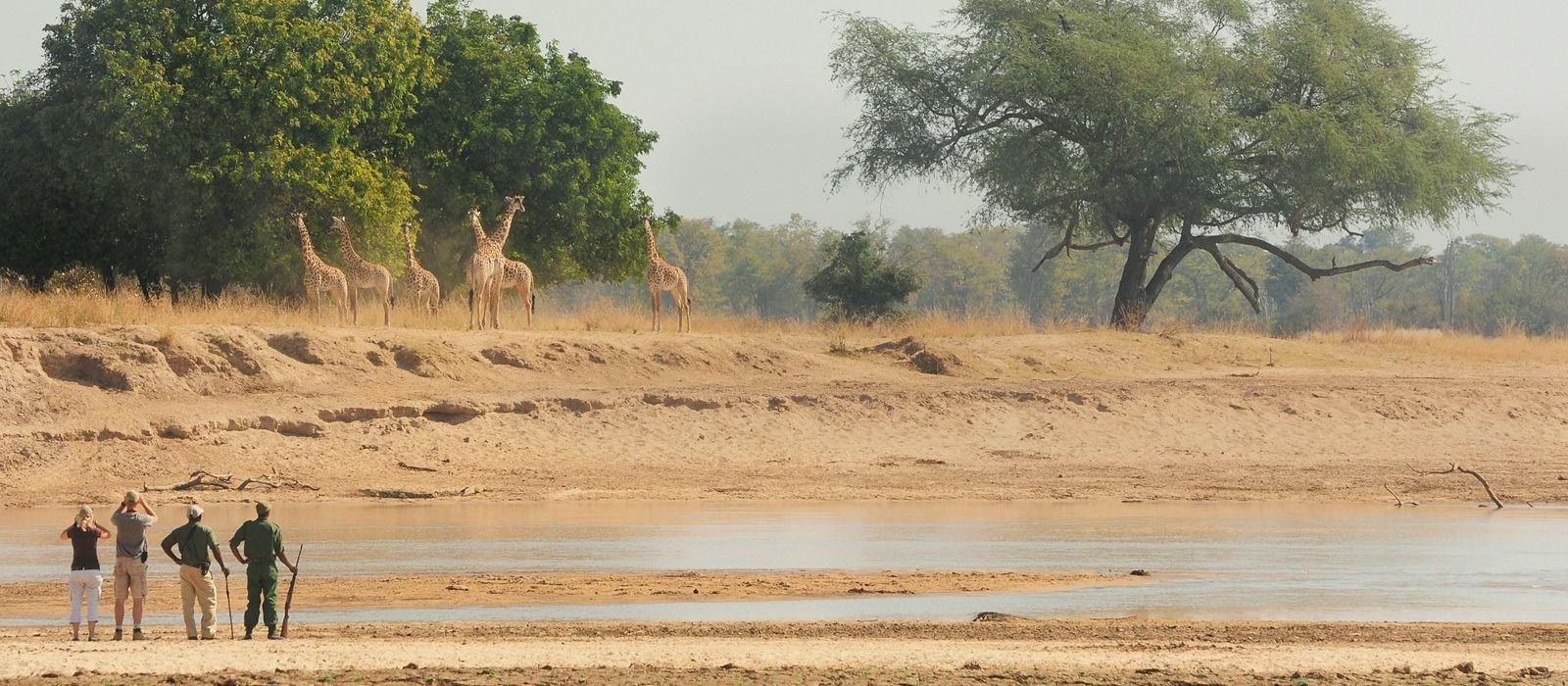 Zambia Tours & Trips