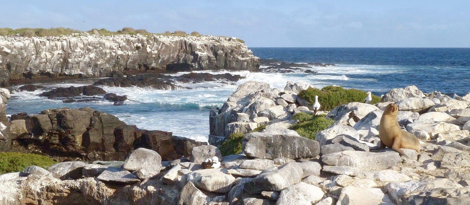 Ecuador – Die Geheimnisse von Galapagos Urlaub 2