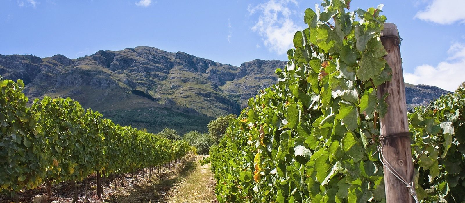South Africa: Winelands, Garden Route and Eastern Cape Tour Trip 2