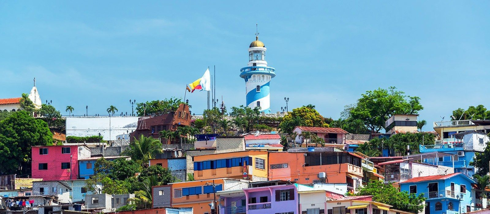 Amazonian Getaway, Devil's Nose and Cuenca Tour Trip 5