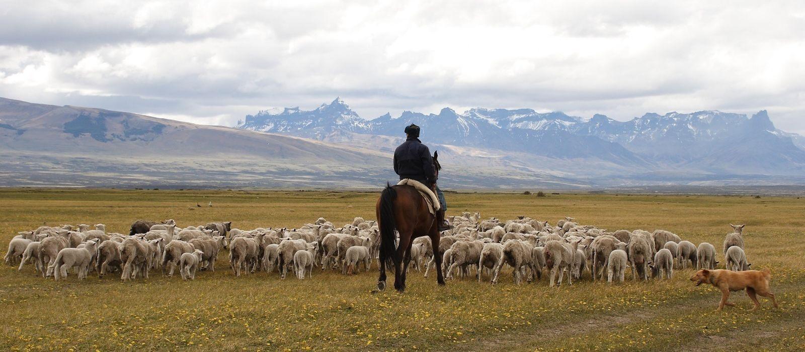 Chile Luxusreise: Außergewöhnlich mit Awasi Urlaub 6