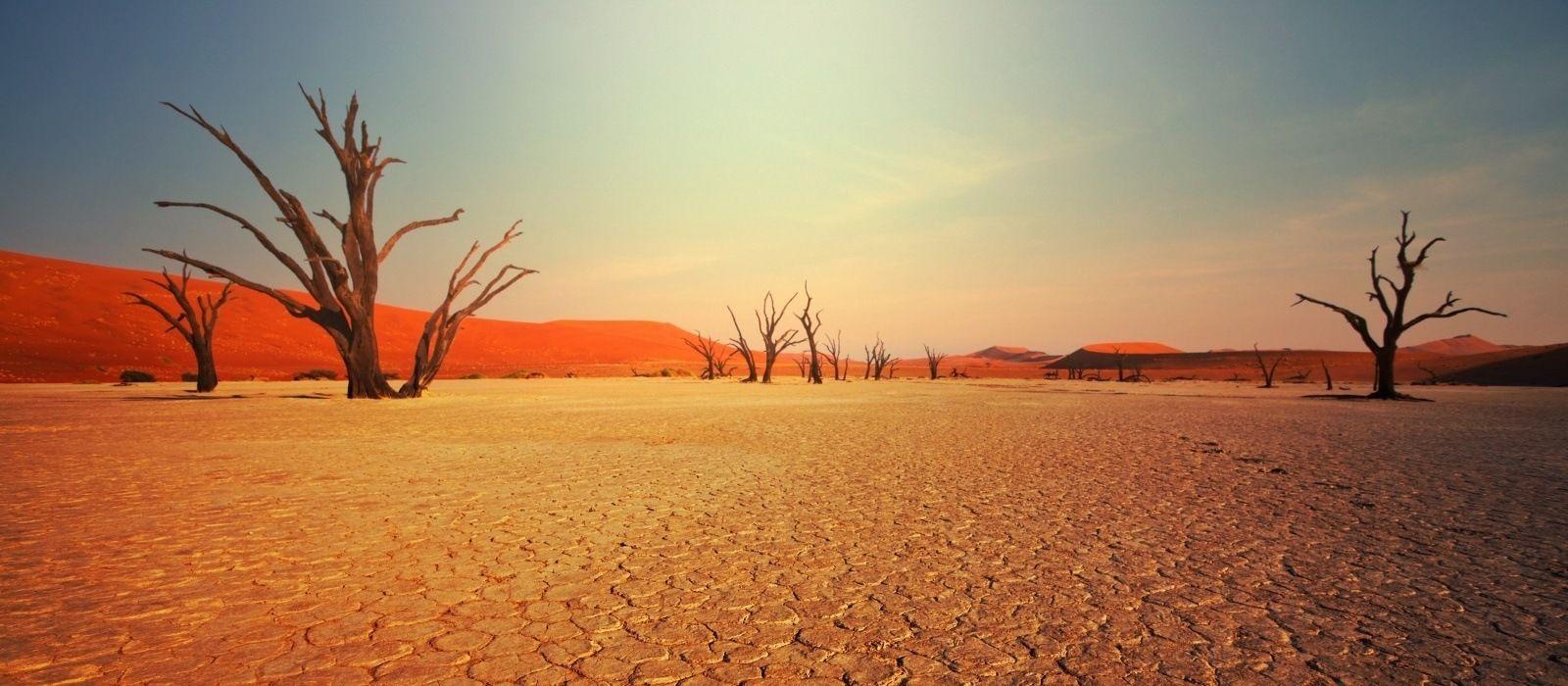 Einmalige Landschaften und exotische Tierwelt: Höhepunkte Namibias Urlaub 1