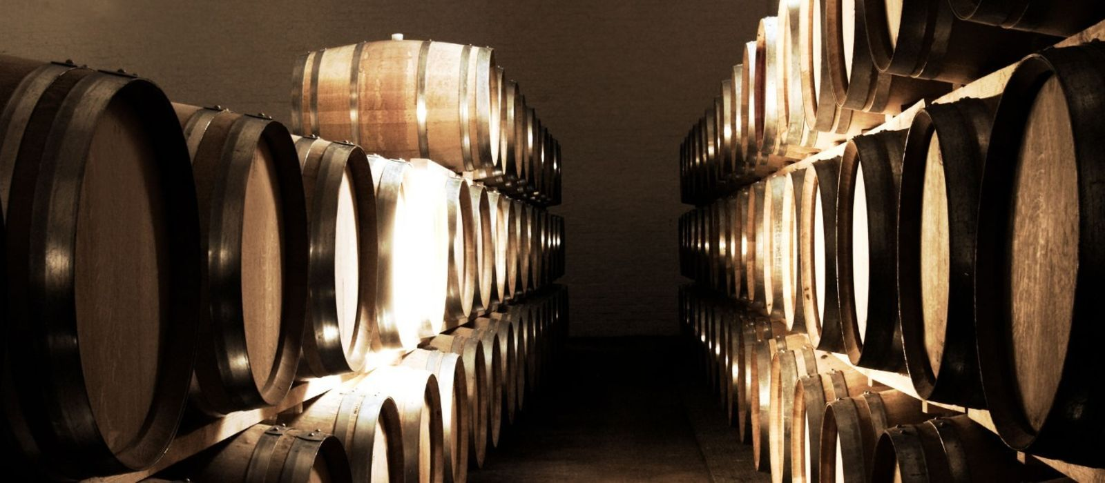 Dine with South Africa's Winemakers Tour Trip 5