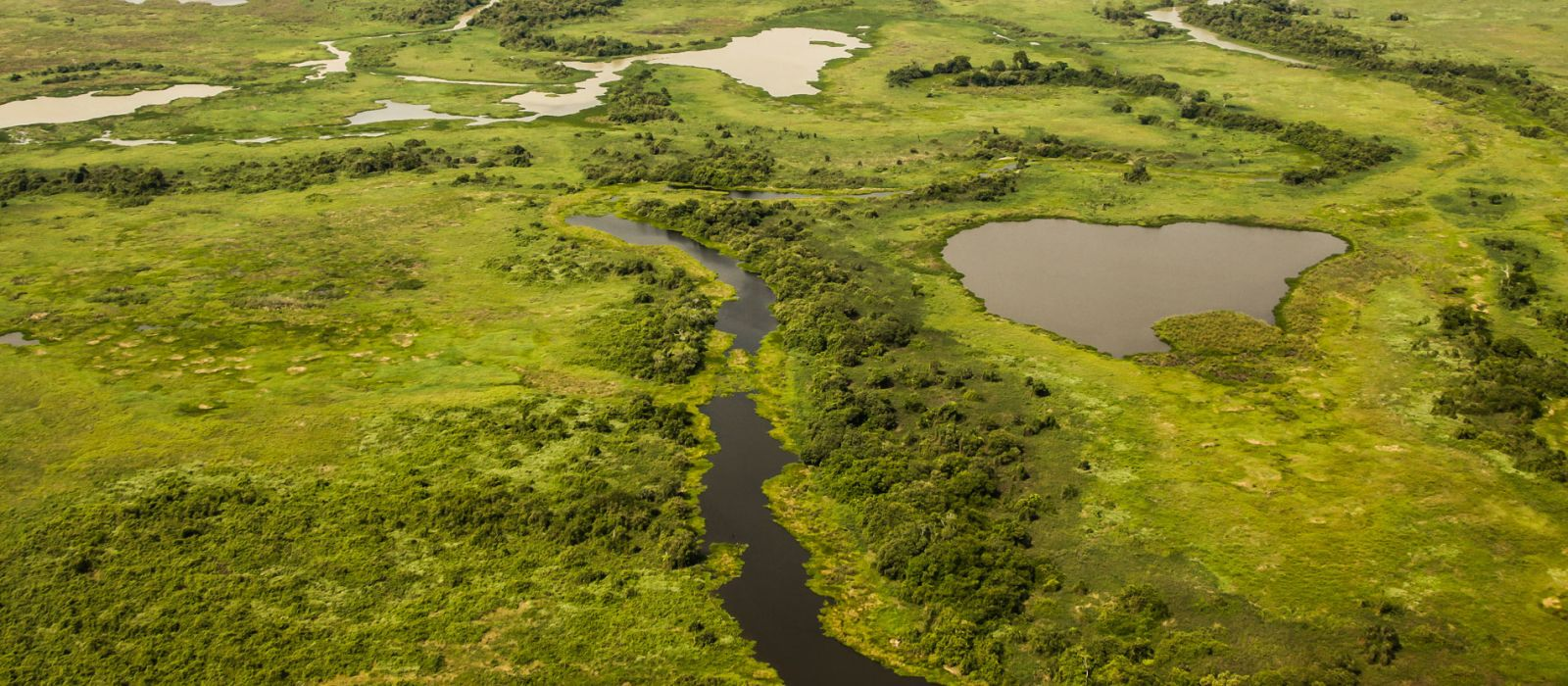 Brazil's Wildlife, Waterfalls and Beach Tour Trip 2
