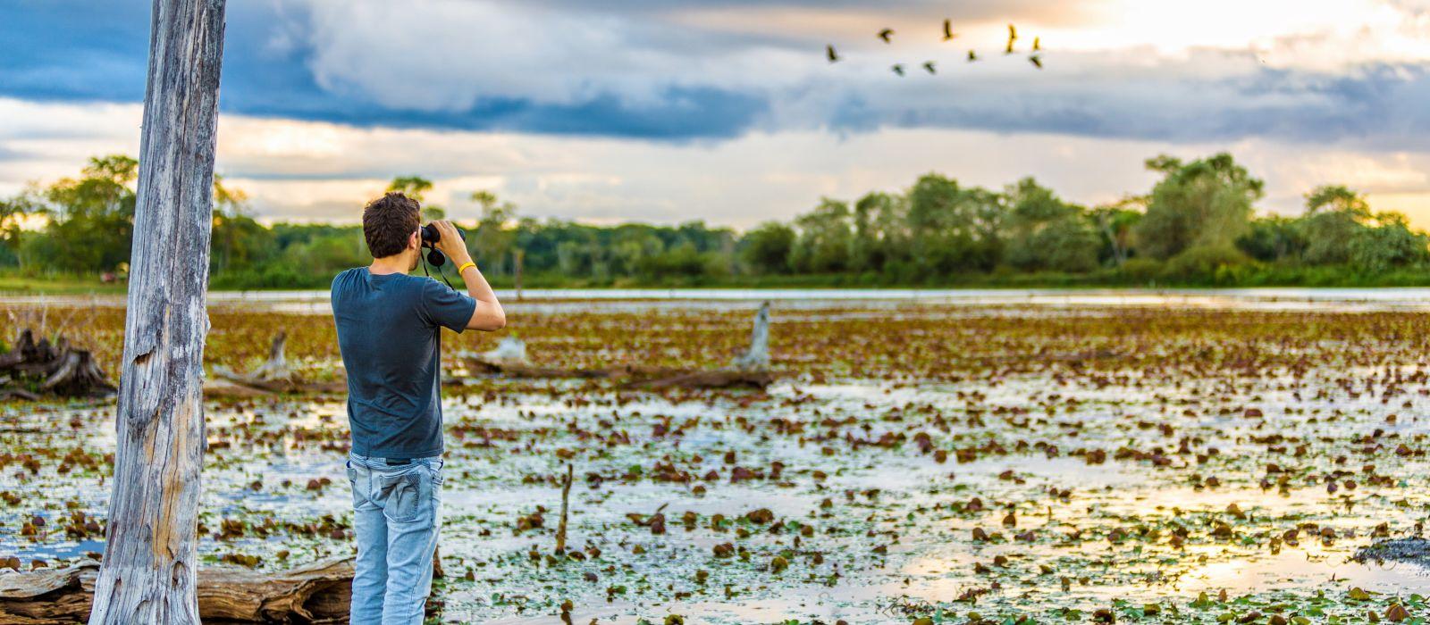 Brasilien Naturreise: Wasserfälle, Pantanal und Amazonas Urlaub 4