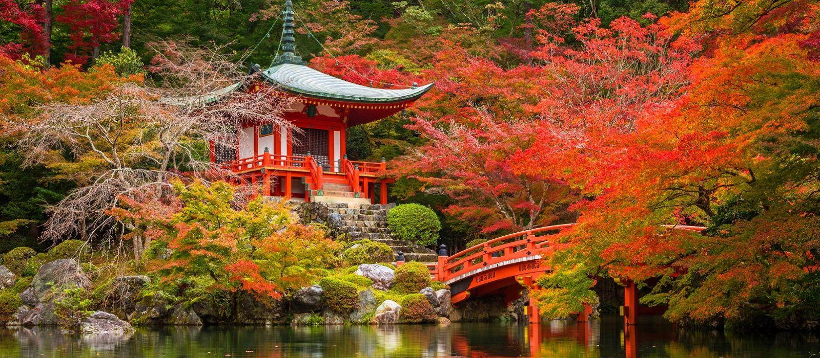 Exklusive Japan Luxusreise Urlaub 2