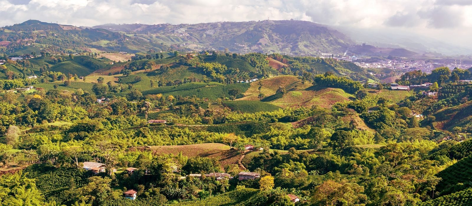 Destination Coffee Region Colombia