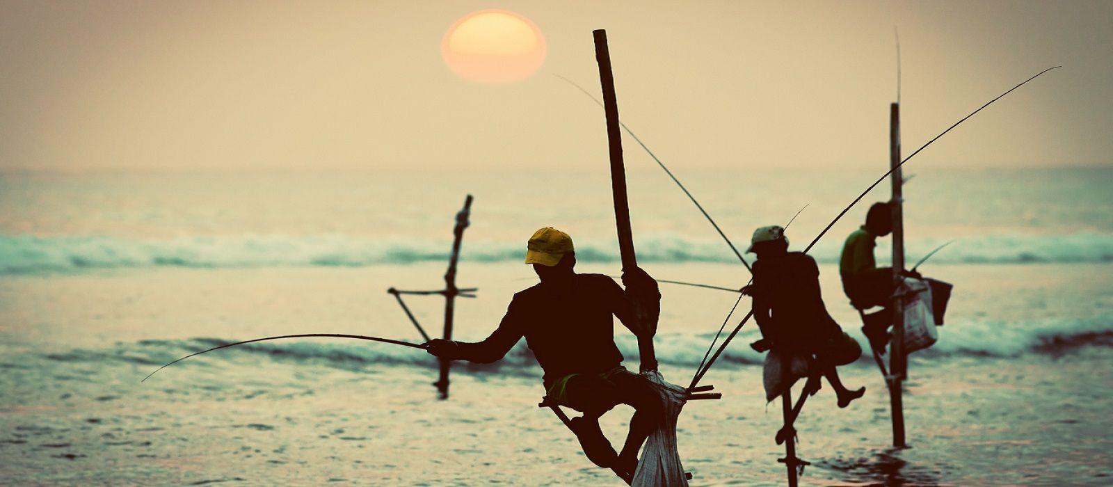 Backwaters to Beaches – Best of Kerala and Sri Lanka Tour Trip 1
