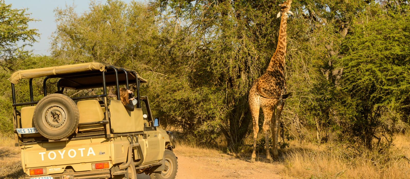 Cape Town, Safari and Exotic Island Vacation Tour Trip 4