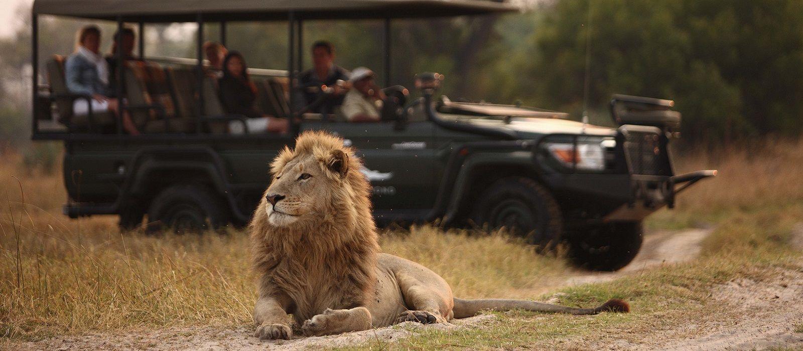 Südafrika, Simbabwe & Botswana: Wilde Tiere & glitzernde Gewässer Urlaub 2