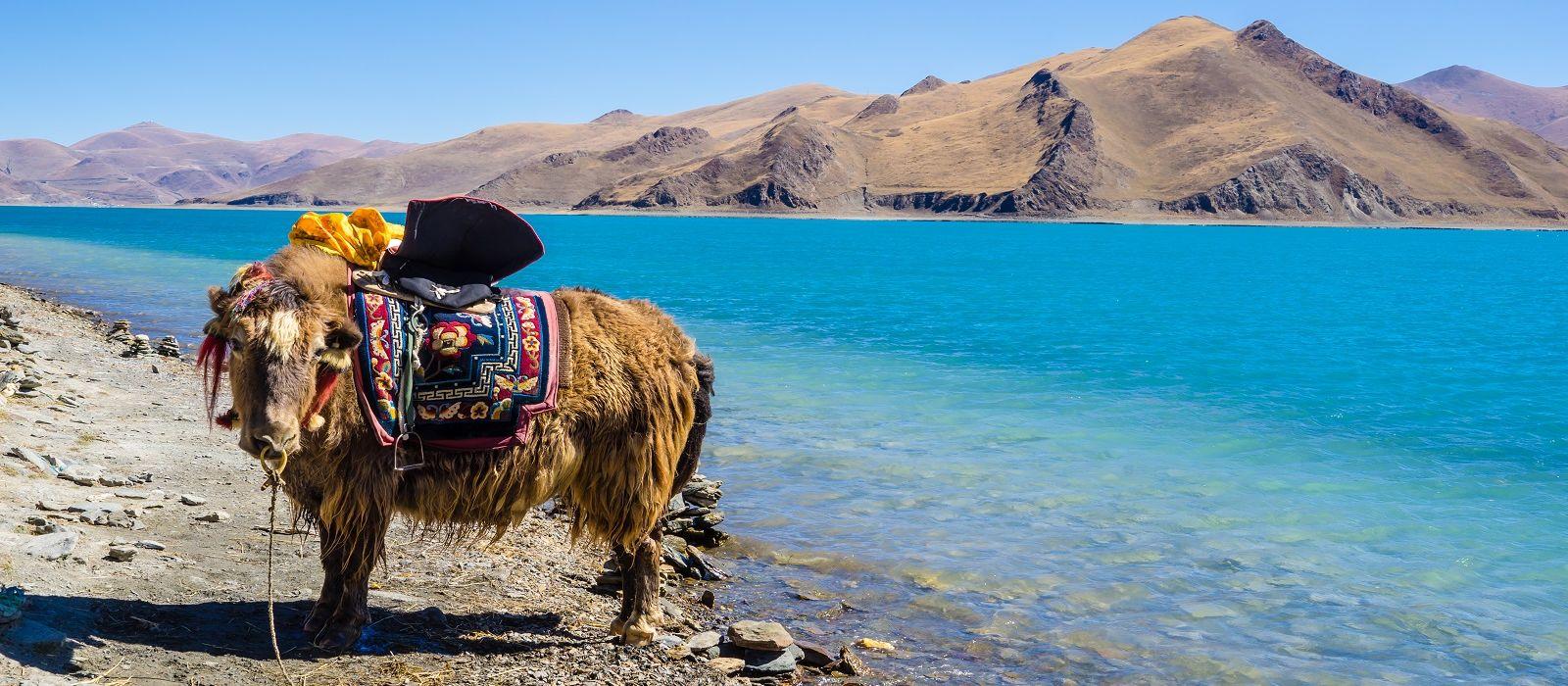 Tibet Reisen Reisen & Rundreisen