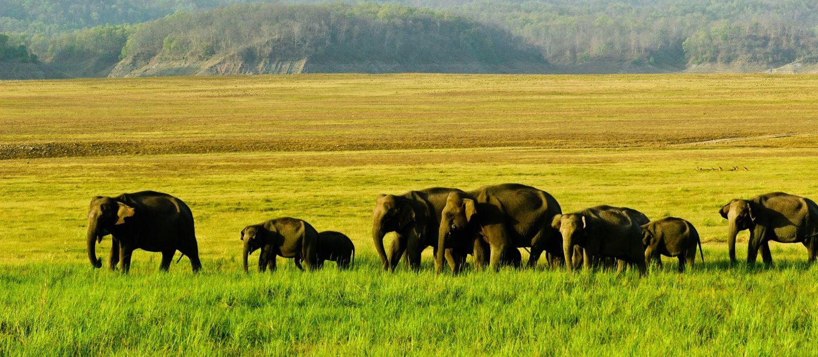Simply Kerala: Malabar Escapes Tour Trip 2