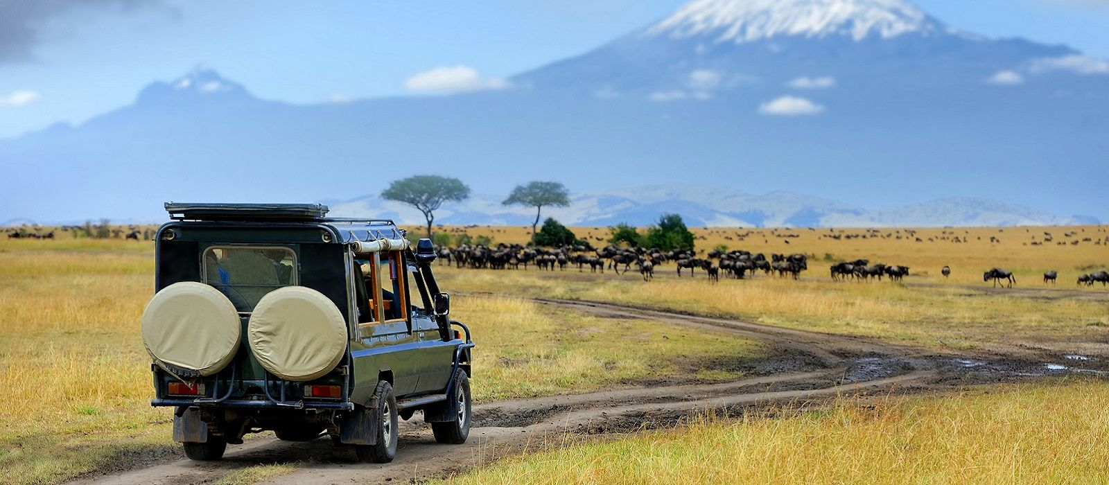 Klassisches Kenia: Samburu, Masai Mara & Strand Urlaub 2