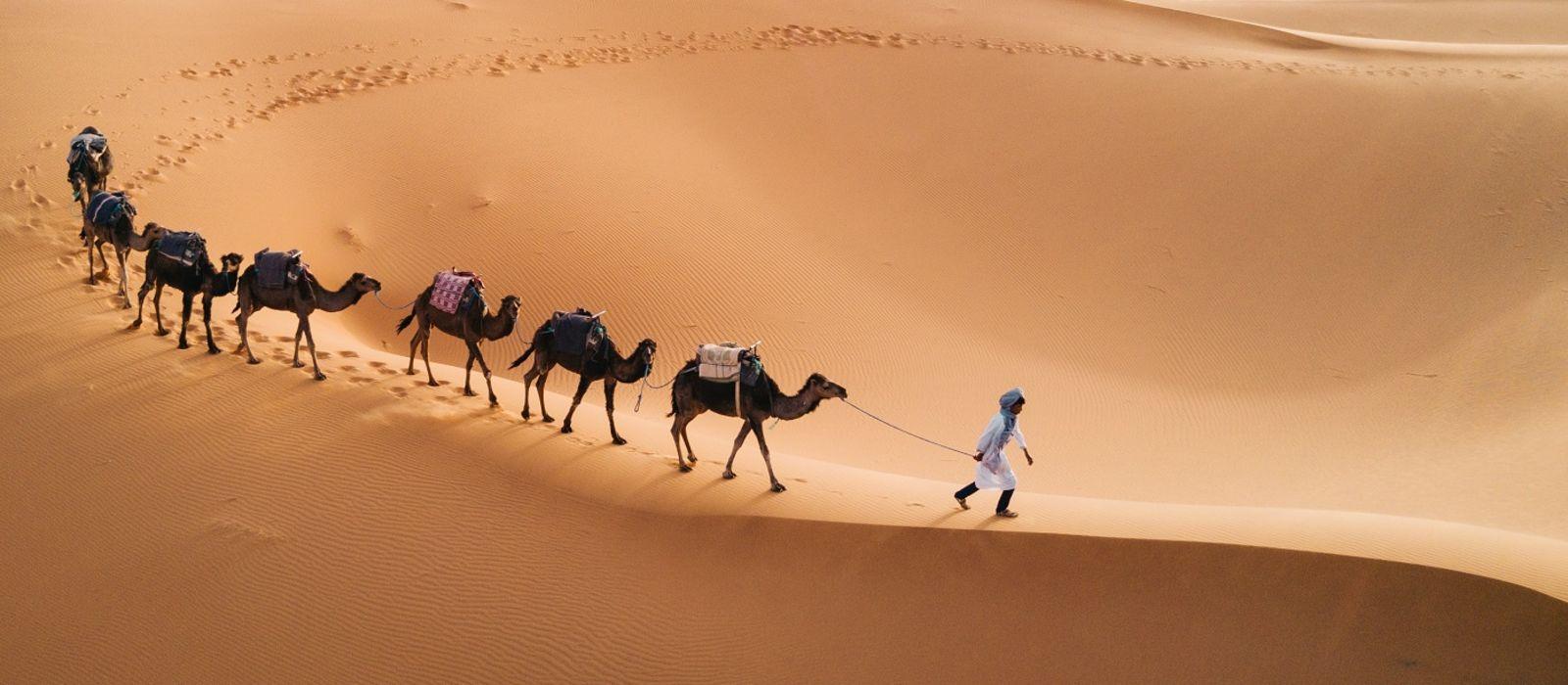 Morocco Tours & Trips 1
