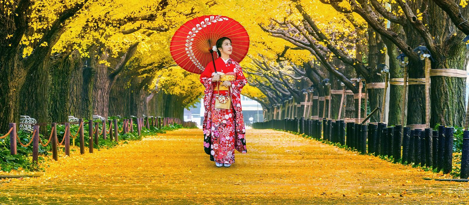 Japan off the Beaten Track Tour Trip 1
