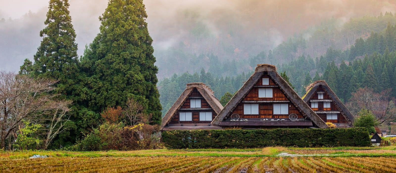 Japan's Hidden Treasures Tour Trip 3