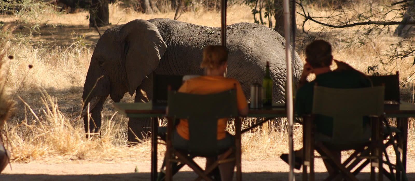 Tanzania Luxusreise – Safari-Abenteuer & Strandparadies Urlaub 4