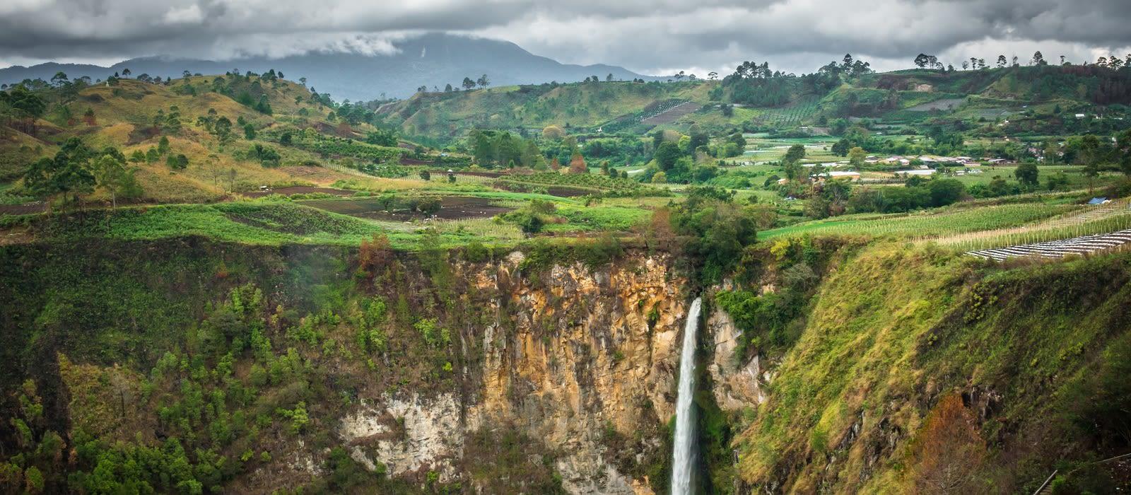 Orangutans und Tempel von Indonesien Urlaub 3