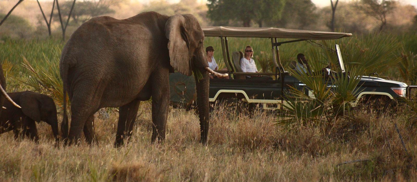 Kenia: Abseits bekannter Wege Urlaub 1
