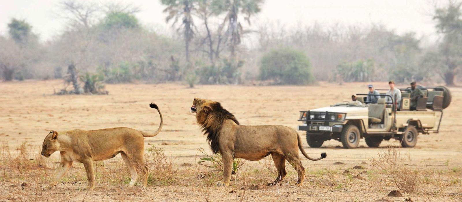 Namibia, Sambia & Malawi: Selbstfahrer-Reise via Caprivi Urlaub 1