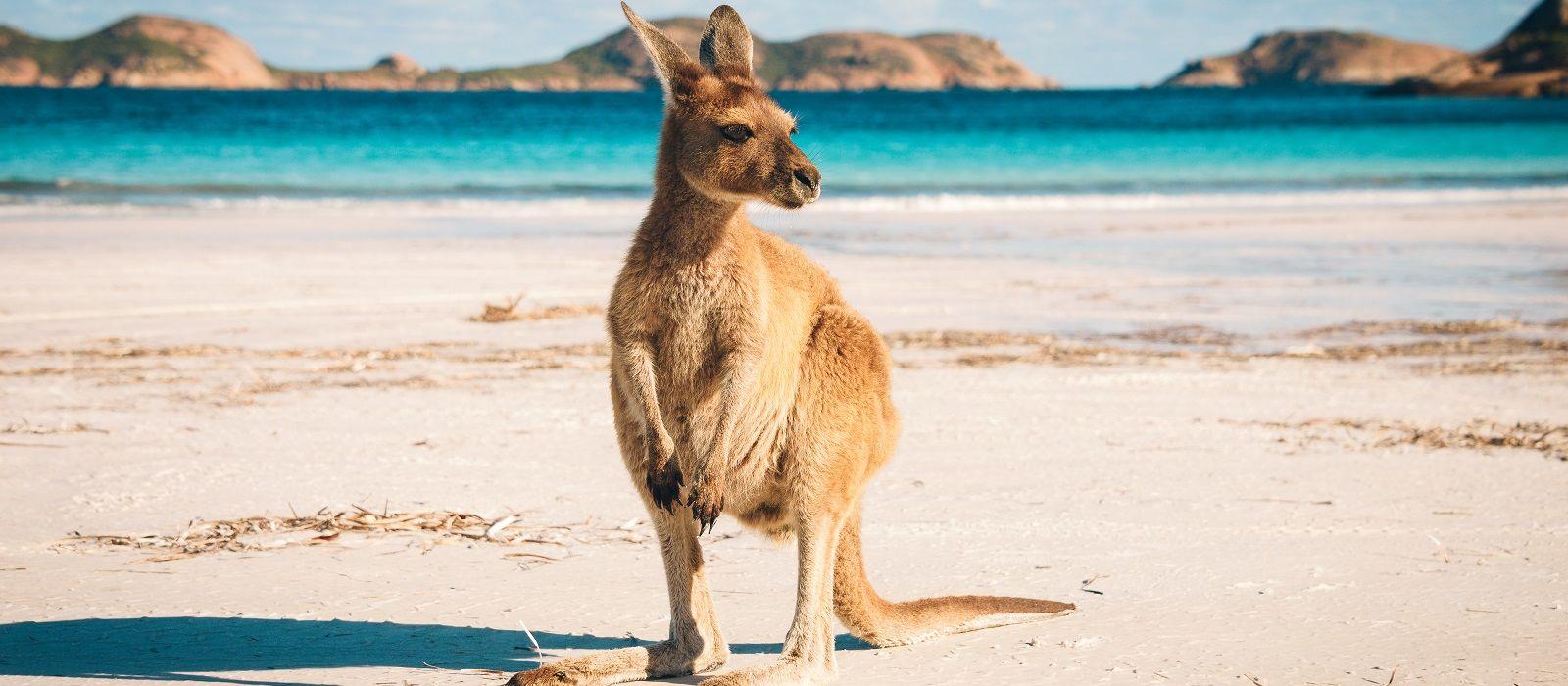 Australia: Cities, National Parks & Beaches Tour Trip 7