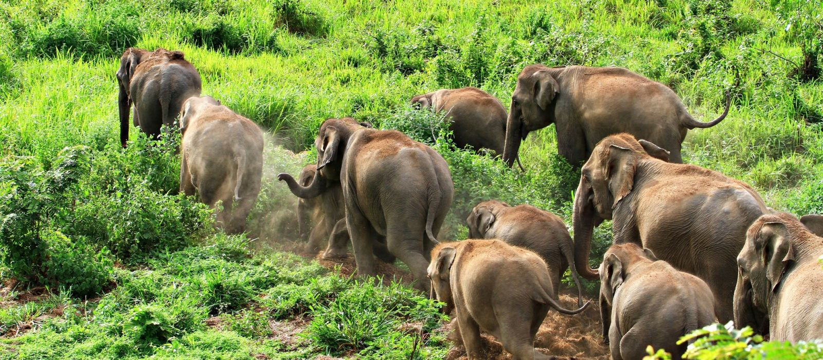 Thailand off the Beaten Path Tour Trip 2