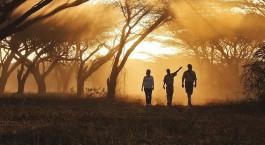Reiseziel Waterberg Plateau Namibia
