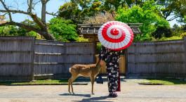 Reiseziel Nara Japan