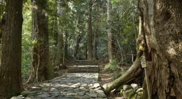 Reiseziel Ise Shima Japan