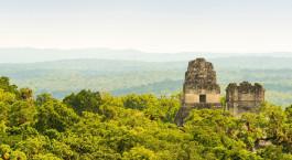 Reiseziel Tikal Nationalpark Guatemala