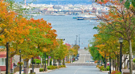 Reiseziel Hakodate Japan