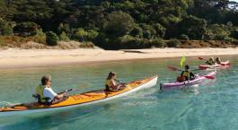 Reiseziel Paihia (Bay of Islands) Neuseeland