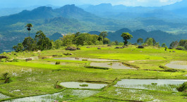 Destination Kapala Pitu Village Indonesia