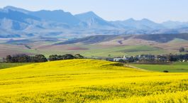 Destination Overberg South Africa