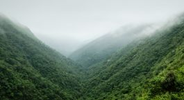 Reiseziel Guwahati Ostindien
