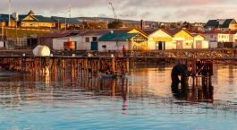 Reiseziel Punta Arenas Kreuzfahrt Chile