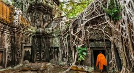 Destination Siem Reap Cambodia