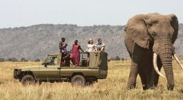 Destination Meru National Park Kenya