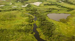 Reiseziel Nördliches Pantanal Brasilien