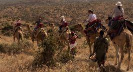 Reiseziel Laikipia – Sabuk Kenia