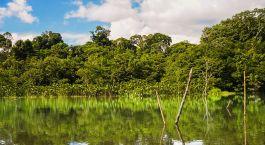 Reiseziel Yasuni Ecuador/Galapagos