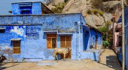 Reiseziel Narlai Nordindien