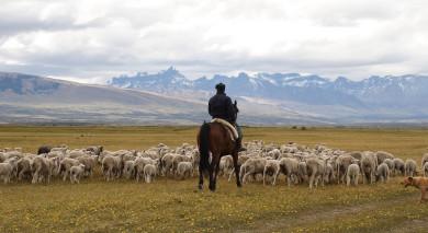 Example private tour: Chile: Signature Landscapes
