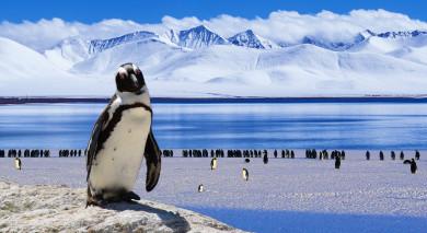 Empfohlene Individualreise, Rundreise: Die unberührte Schönheit Patagoniens & Abstecher in die Antarktis