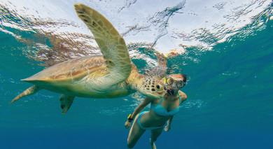 Empfohlene Individualreise, Rundreise: Seychellen: Inselparadies & The Moorings Kreuzfahrt