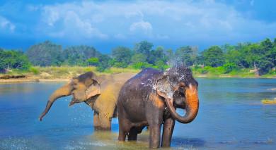 Empfohlene Individualreise, Rundreise: Höhepunkte von Nepal und Bhutan